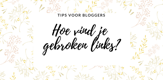 alles over gebroken links. Hoe vind je broken links en wat is de oorzaak-